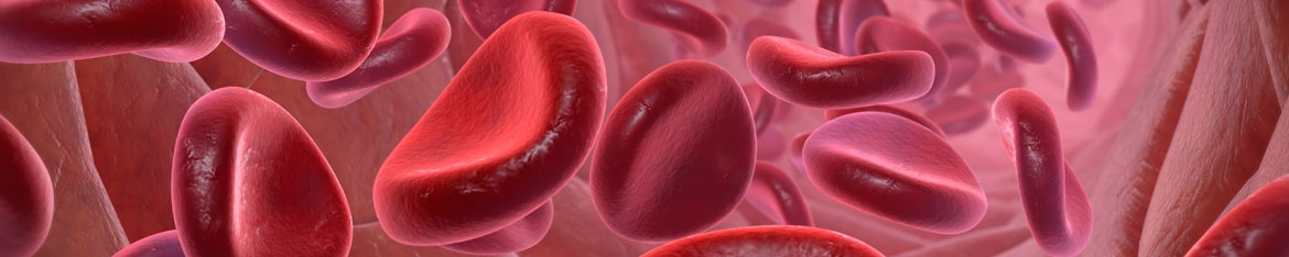 Haematology and haemotherapy